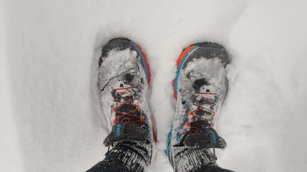 Trabuco Max im Schnee